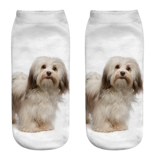 Sokken met Havanezer puppy print