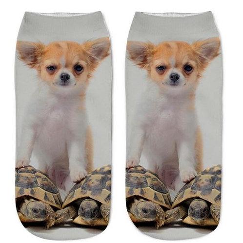 Chihuahua op schildpadden print sokken