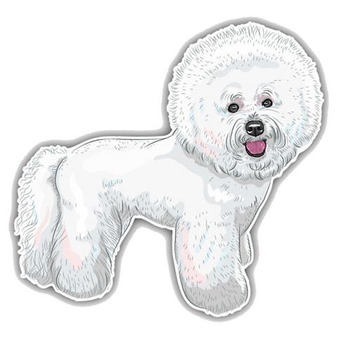 Bichon Frise hond auto sticker