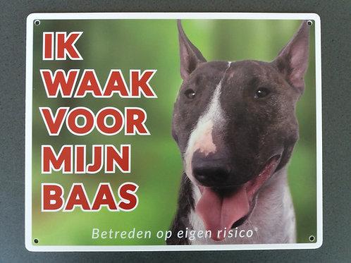 Waakbord hond - Bull terrier