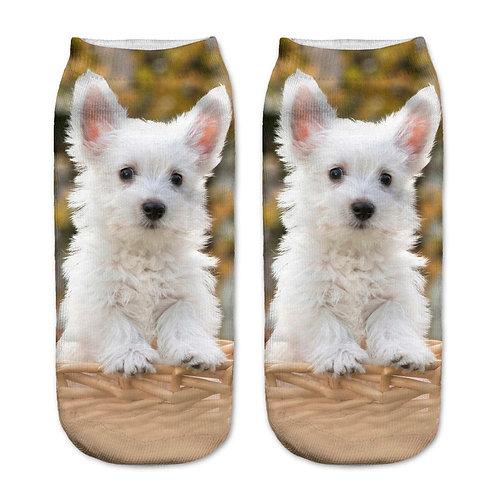 Keeshond puppy print sokken - wit