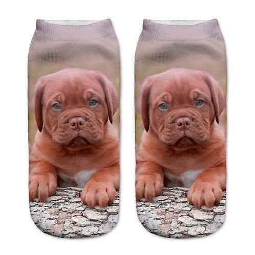 Bordeaux hond puppy print sokken
