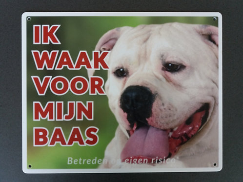 Waakbord hond - American Bulldog