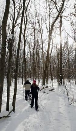 Snowshoe/Ski