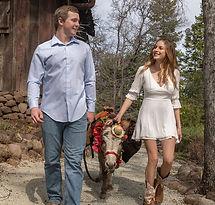 half-ass-adventures-wedding-donkeys-0440