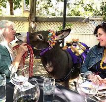 half-ass-adventures-donkey-kiss.jpg