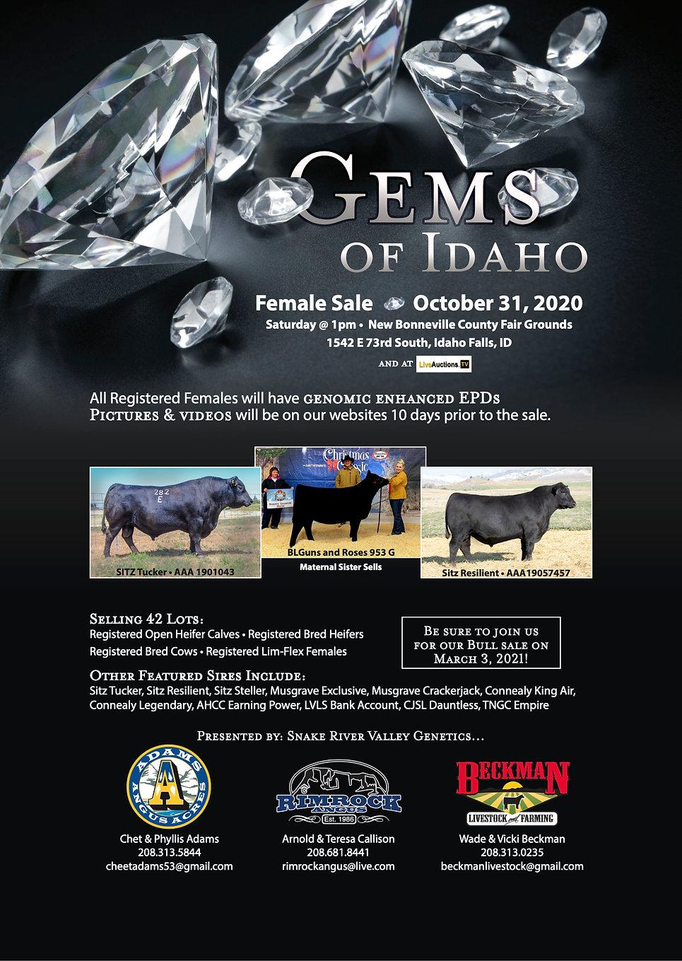 Gems of Idaho.jpg