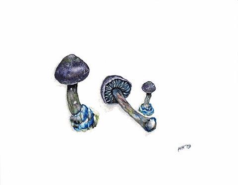 Purple Mushroom Watercolour Print