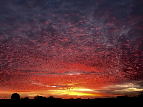 Red Sky Photography Print