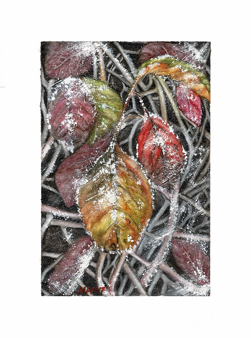 Frosty Autumn Leaves Watercolour Print