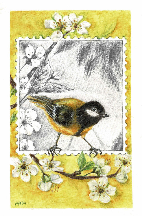 Black Tit in Spring Watercolour Print