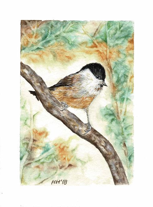 Tit in Autumn Watercolour Print