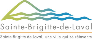 LogoSBDL_NV_RVB.jpg