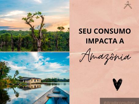 7 Passos para ser o consumidor que a Amazônia precisa