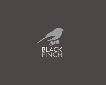 Black Finch Music