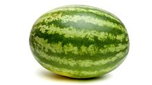 Watermelon harvest slightly behind in VA, but still 'looking pretty good'