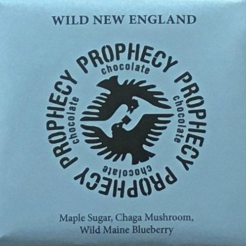 Wild New England