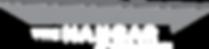 Hangar at TS logo (white text) - 300x100