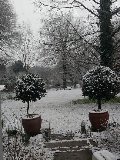 2018 02 06 snowy2_resize_resize.jpg