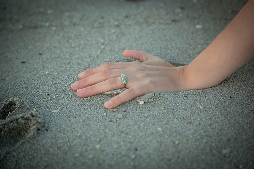 _X5C7842Hand in the Sand.jpg