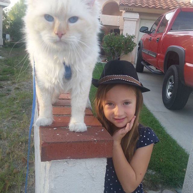 The neighbor kids just love to take Brendan on walks