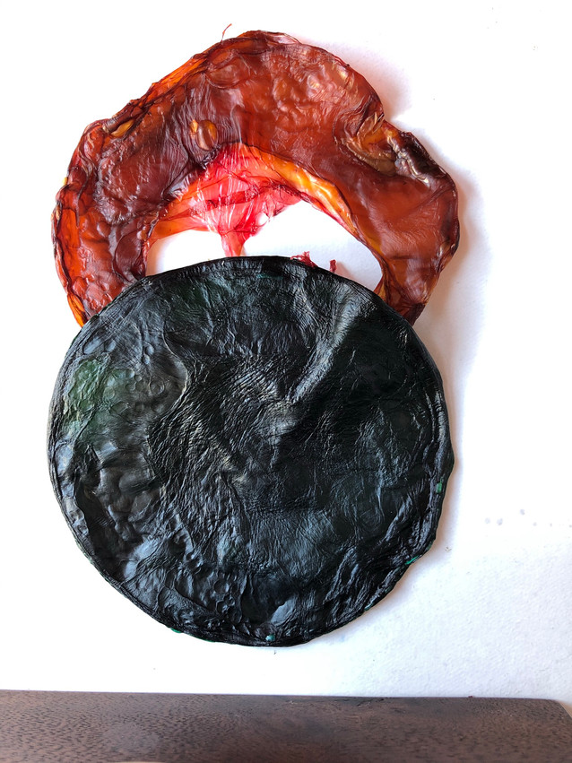 Dried kombucha