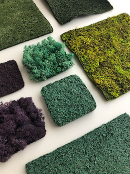 Material set lichen bioplastic