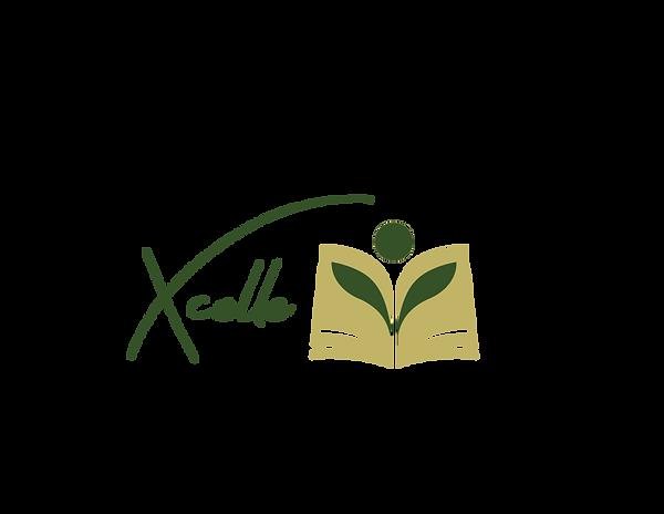 xcelle-logo-01 (1).png