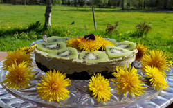 Raw Kiwi/Maskros tårta
