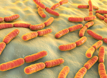 Diversity in Your Skin Microbiome