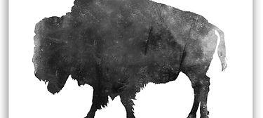 buffalo-mom.jpg