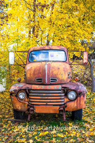 #7442-1949 Ford Truck
