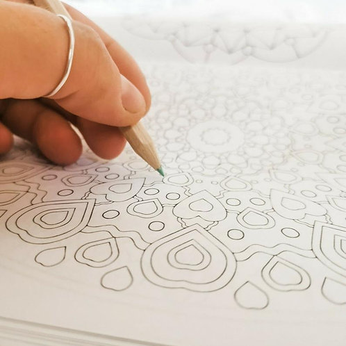Adult Positivity Quotes & Colouring Book