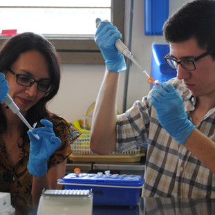 DNAsing our RNA