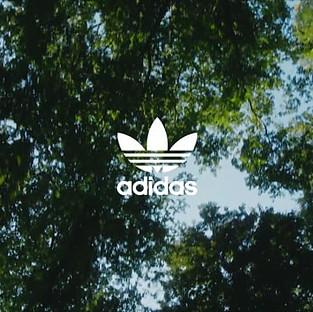 TAF X Adidas