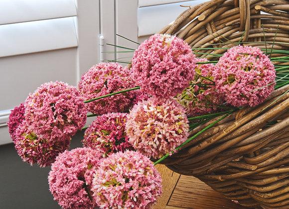 Allium Spray Sophisticated or Gentle Pink
