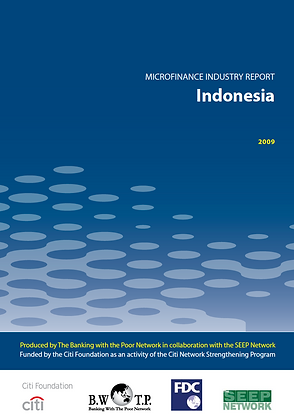 Microfinance Industry Assessment INDONESIA, 2009