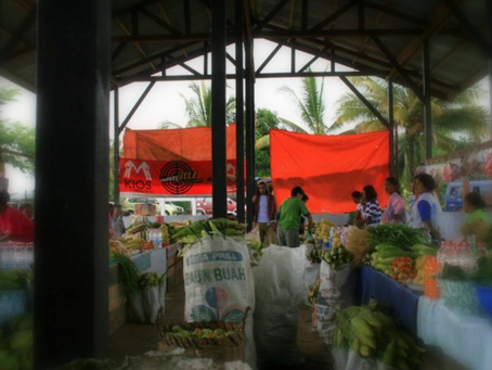Cross-border trade: Indonesia and PNG