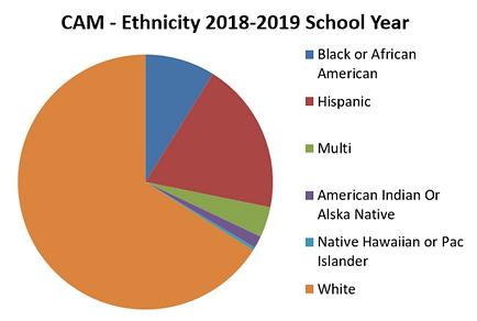 CAM-ethnicity.PNG