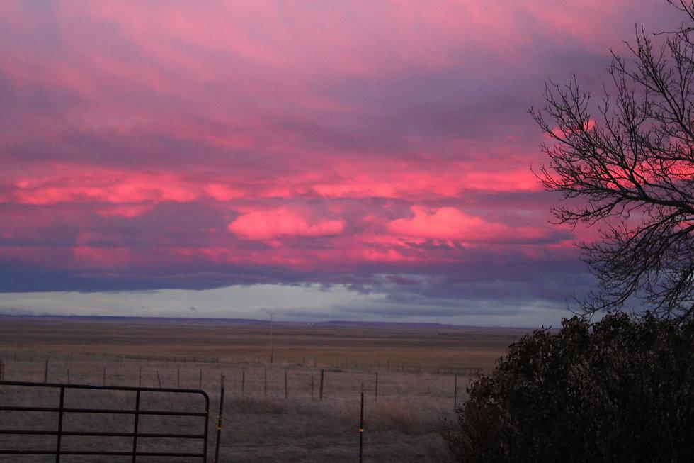 sunset over field 2.JPG