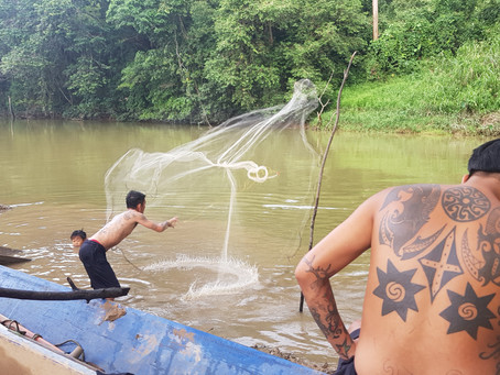 My Stay at an Iban Longhouse: Tribal Culture, Familiar Families and lots and lots of Langkau