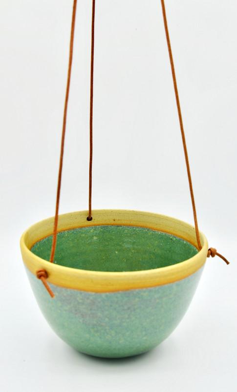 suspension plante verte copie.jpg