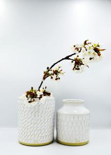 duo vases20_1.jpg