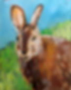 SS.rabbit.jpg