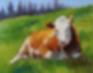 noble.cow.copyright.jpg