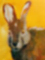 ss.rabbit6.jpg
