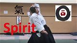 Spirit T copy.jpg