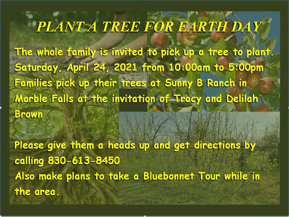 Plant a tree for Earth Day.jpg