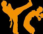 Figura Capoeira.png