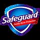safeguard png.png